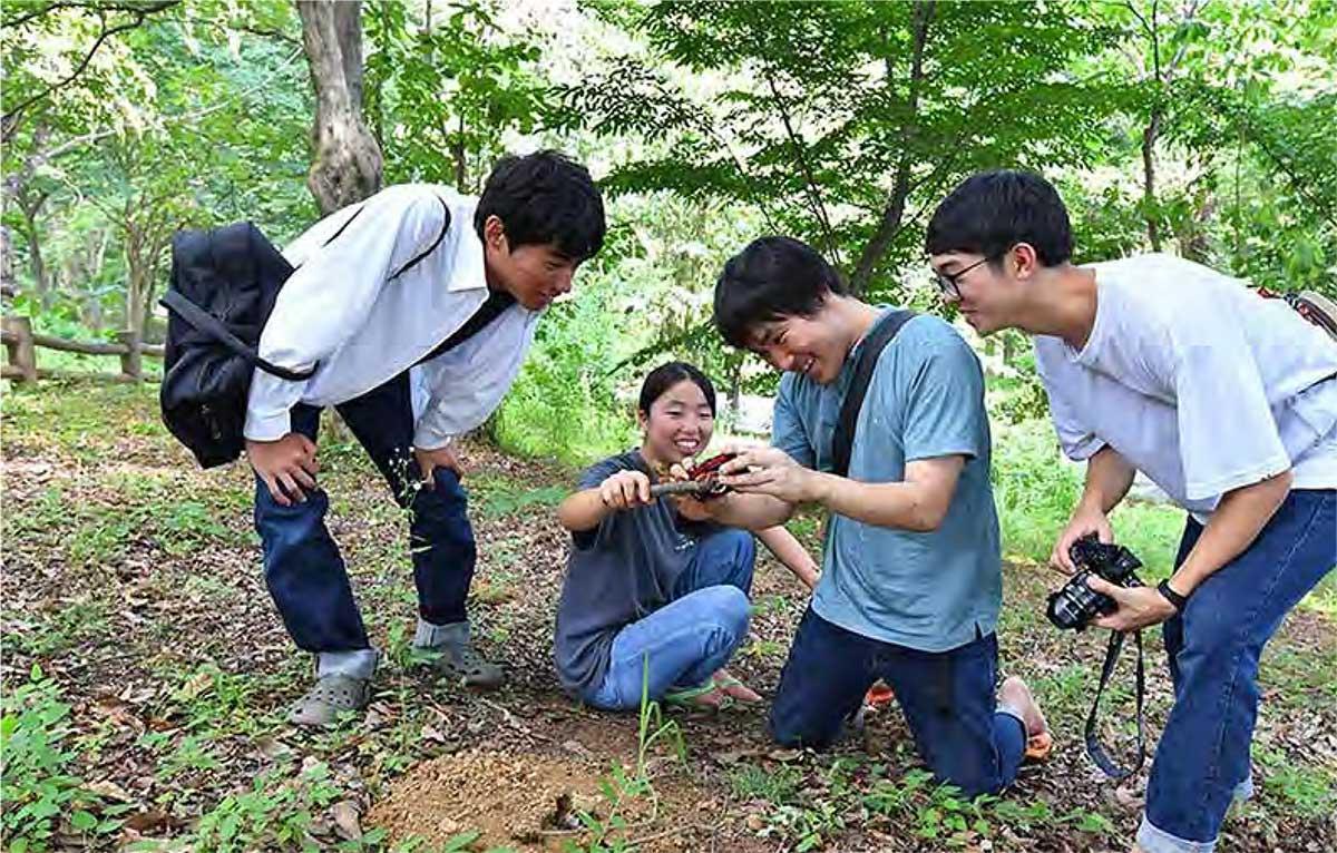 小岩井生態学